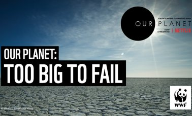 Event image Our Planet: Too Big to Fail
