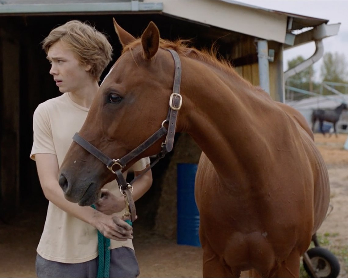 Lean on Pete: 1 of 1