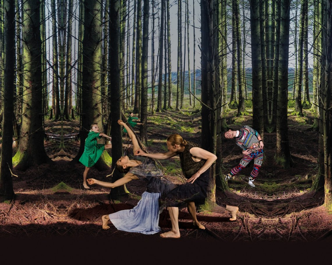 National Dance Company Wales: Terra Firma: 1 of 1
